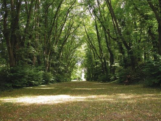 Le Parc du Château de Marcouville