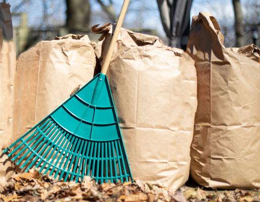 Distribution de sacs pour déchets jaunes et verts