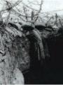 Marne. Tranchée française avec fil de fer barbelé. Archives départementales du Val d'Oise