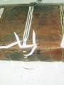 Passage des cinq supports de couture et passes des 2 tranchefiles à travers la couvrure restaurée. Bords de la couvrure non repliés à ce stade