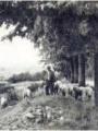 Pontoise - Saint-Martin, lieu agricole